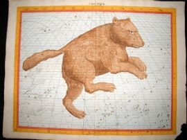 Flamsteed Atlas Coelestis 1781 LG Folio Hand Col Celestial Map. Ursa Major 19